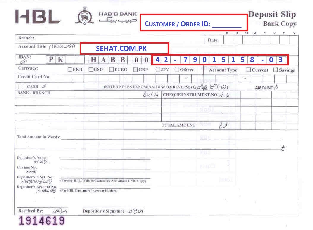 aeroflot online check in document number
