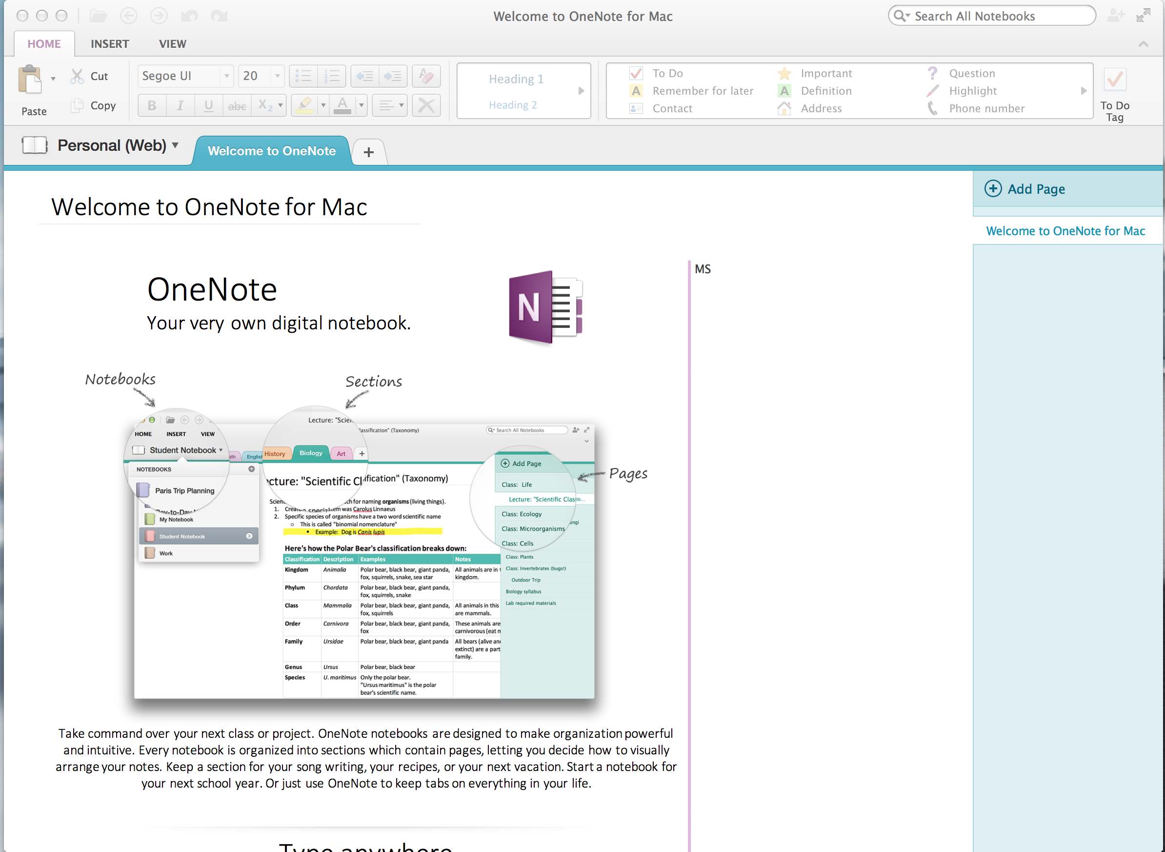 what is microsoft document connection for mac