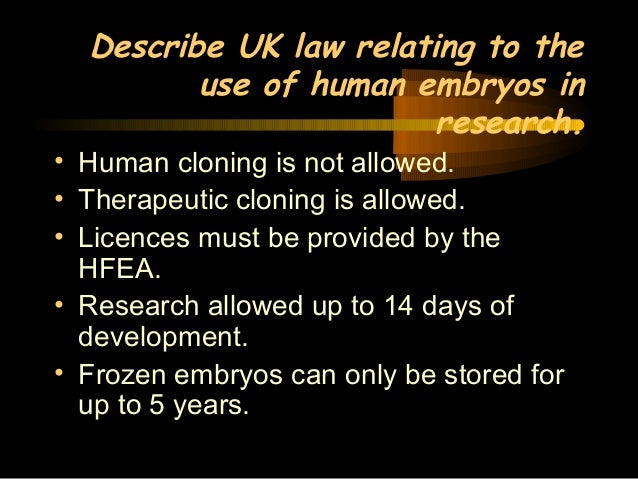 church document on frozen embryos